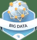 Illustration of the Big Data badge