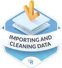 Illustration of the Importing & Cleaning Data  badge