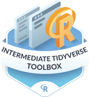 Illustration of the Intermediate Tidyverse Toolbox badge