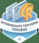Illustration of the Intermediate Tidyverse Toolbox badge