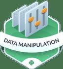 Illustration of the Data Manipulation  badge